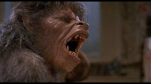 Picture of An American Werewolf's classic transformation scene